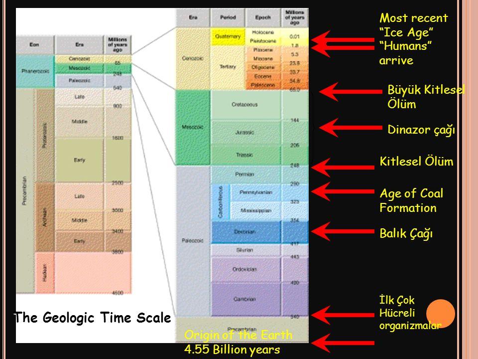 The Geologic Time Scale Origin of the Earth 4.55 Billion years İlk Çok Hücreli organizmalar Balık Çağı Age of Coal Formation Kitlesel Ölüm Dinazor çağ