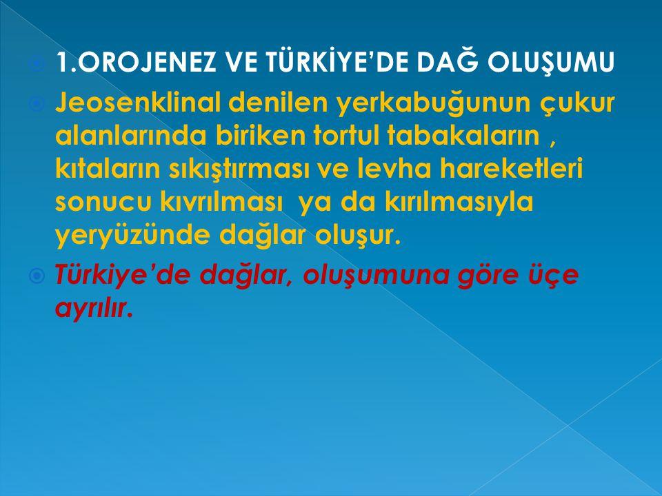  Türkiye'nin yakın bir jeolojik zamanda oluştuğunun kanıtları;  - Depremlerin sık olması.  -Aktif fay kuşaklarının bulunması.  -Ortalama yükseltis
