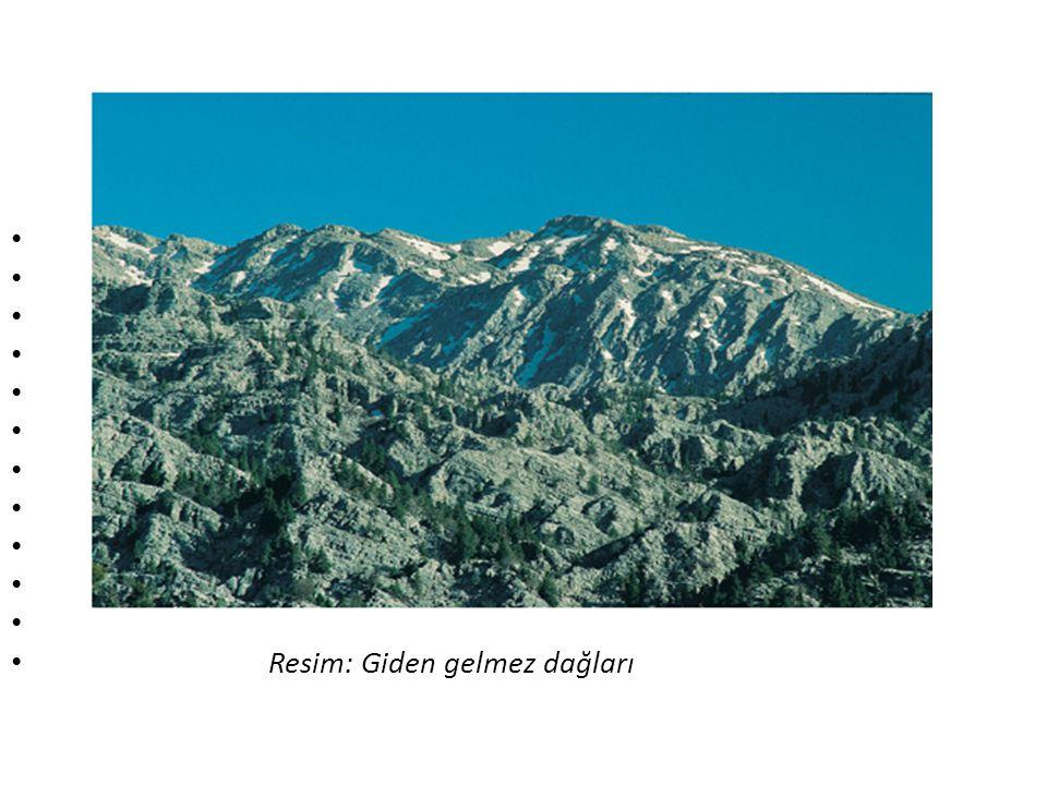 • Karadeniz Bölgesi: • Batı Karadeniz: Küre,Ilgaz, Köroğlu dağları • Orta Karadeniz: Canik Dağları • Doğu Karadeniz: Giresun,Rize(Kaçkarlar) Çimen, Me