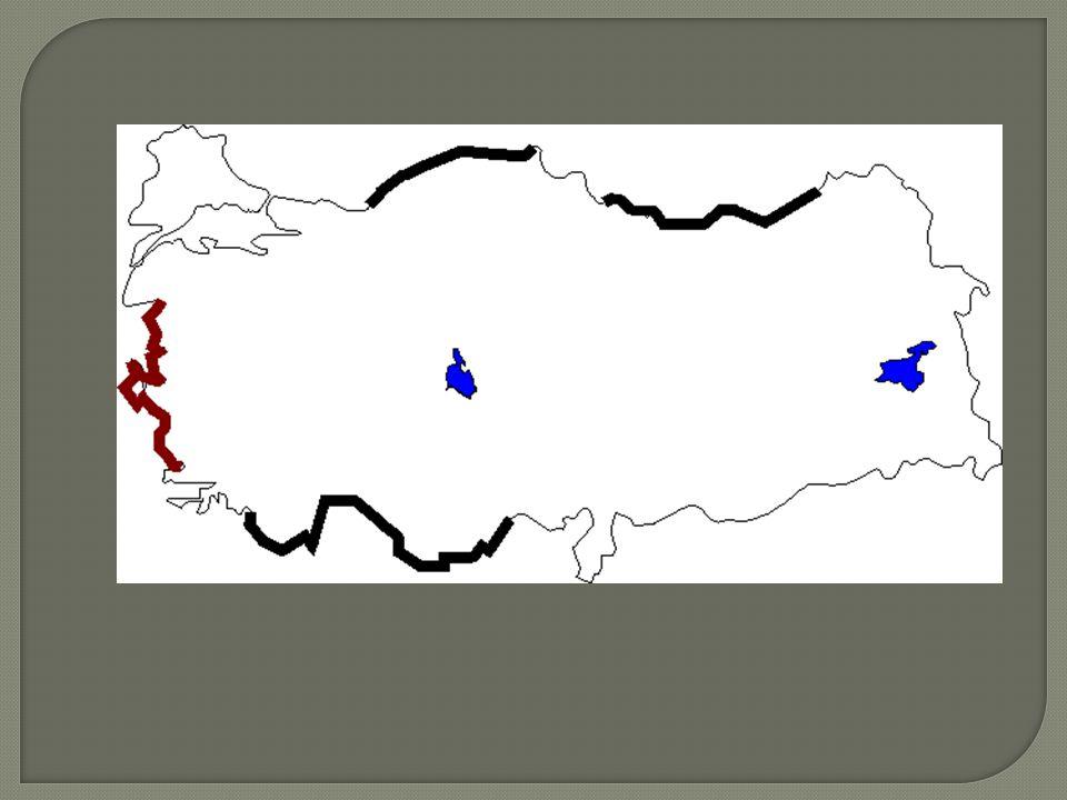  KITA SAHANLI Ğ I( Ş ELF ALANI):  Jeolojik olarak bir ülkeyi olu ş turan kara parçasının deniz altında devam eden kısmına kıta sahanlı ğ ı denir. De