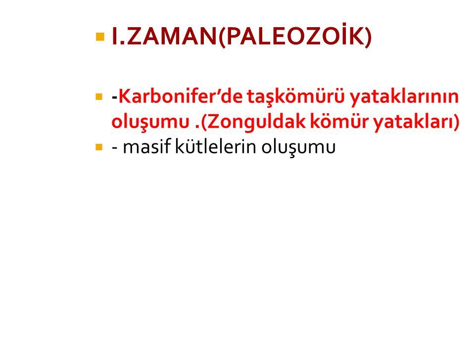  I.ZAMAN(PALEOZOİK)  -Karbonifer'de taşkömürü yataklarının oluşumu.(Zonguldak kömür yatakları)  - masif kütlelerin oluşumu