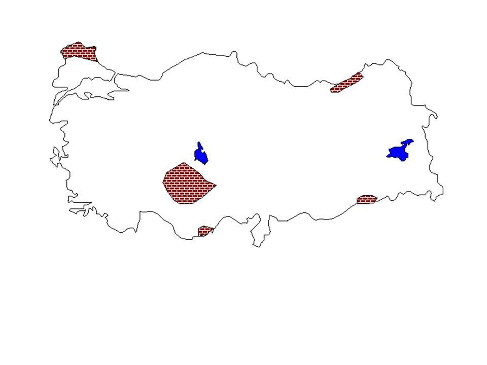 • UYARI: Deprem kuşaklarının dağılışı ile sıcak suların, kaplıca ve ılıcaların dağılışı paralellik gösterir. • ÖRNEK: 2011 YGS: • I. Anadolu aktif dep