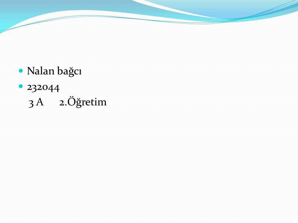  Nalan bağcı  232044 3 A 2.Öğretim