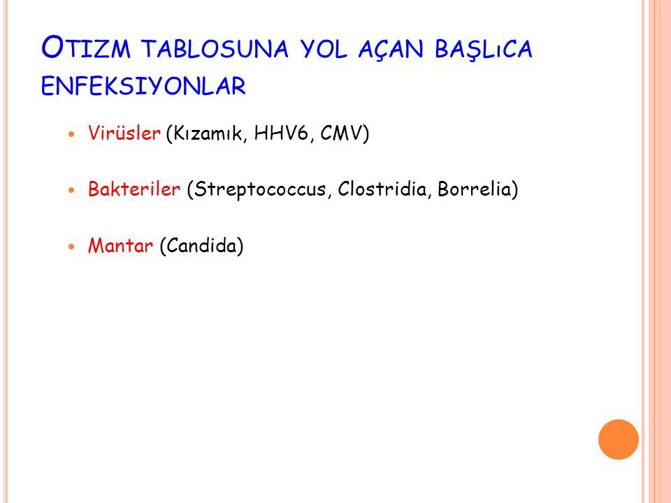 O TIZM TABLOSUNA YOL AÇAN BAŞLıCA ENFEKSIYONLAR  Virüsler (Kızamık, HHV6, CMV)  Bakteriler (Streptococcus, Clostridia, Borrelia)  Mantar (Candida)