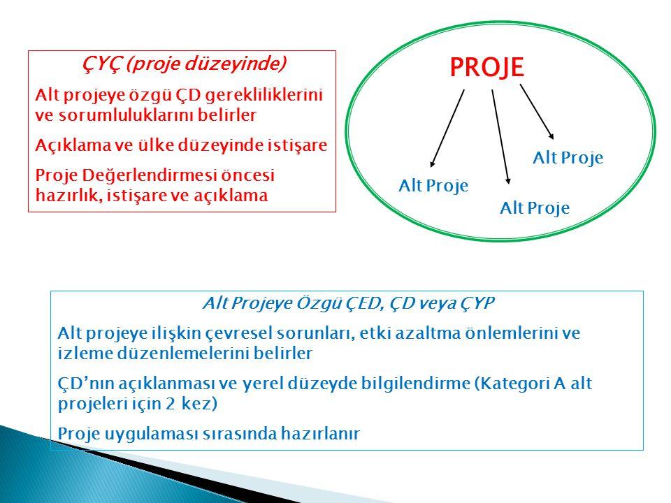 PROJE Alt Proje ÇYÇ (proje düzeyinde) Alt projeye özgü ÇD gerekliliklerini ve sorumluluklarını belirler Açıklama ve ülke düzeyinde istişare Proje Değe