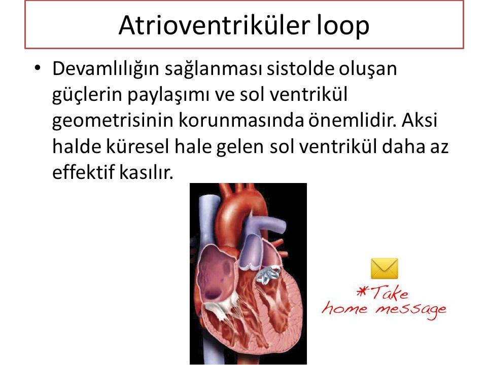 Atrioventriküler loop • Devamlılığın sağlanması sistolde oluşan güçlerin paylaşımı ve sol ventrikül geometrisinin korunmasında önemlidir. Aksi halde k