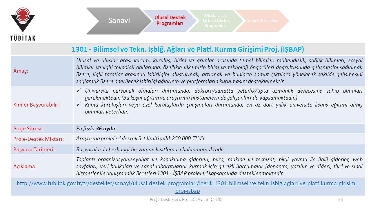 Proje Destekleri, Prof. Dr. Ayhan ÇELİK23 1301 - Bilimsel ve Tekn. İşblğ. Ağları ve Platf. Kurma Girişimi Proj. (İŞBAP) Amaç: Ulusal ve uluslar arası