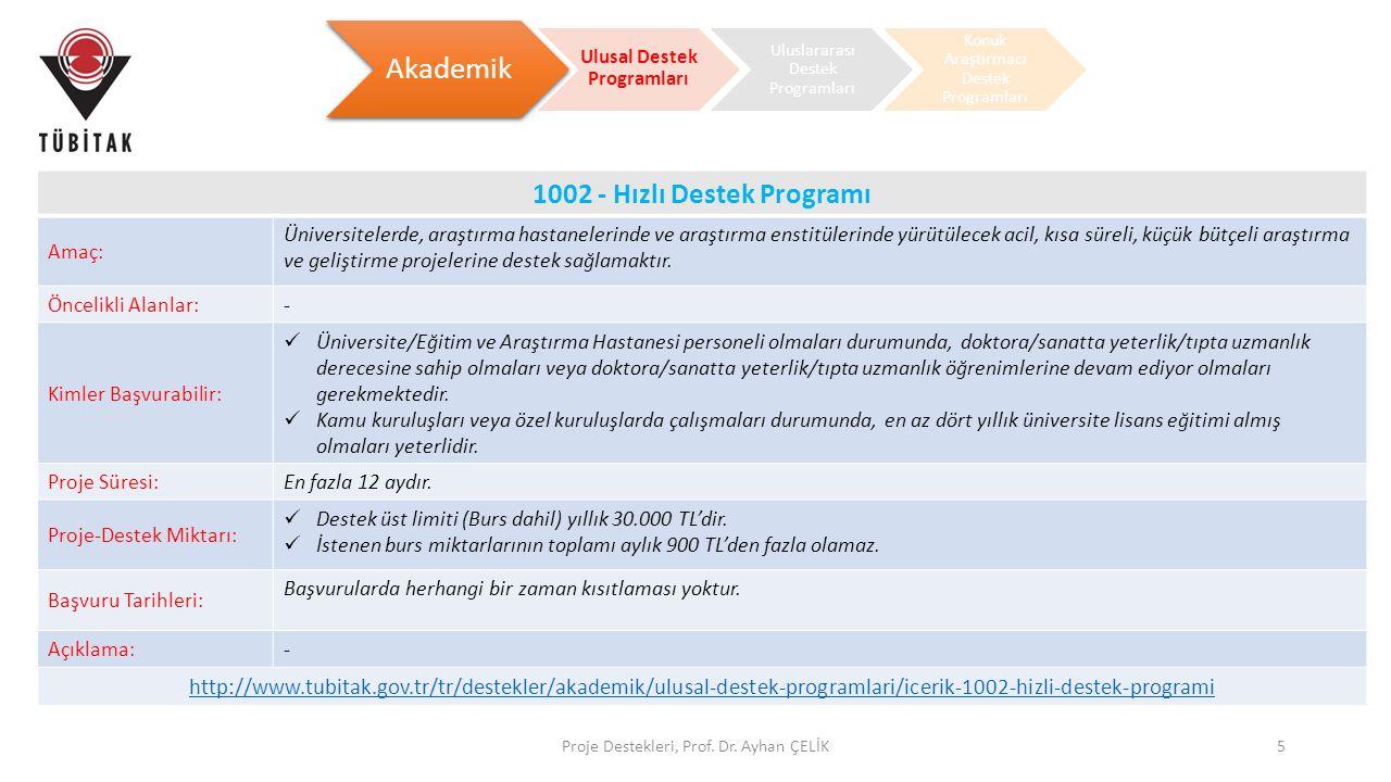 Proje Destekleri, Prof. Dr. Ayhan ÇELİK5 Akademik Ulusal Destek Programları Uluslararası Destek Programları Konuk Araştırmacı Destek Programları 1002