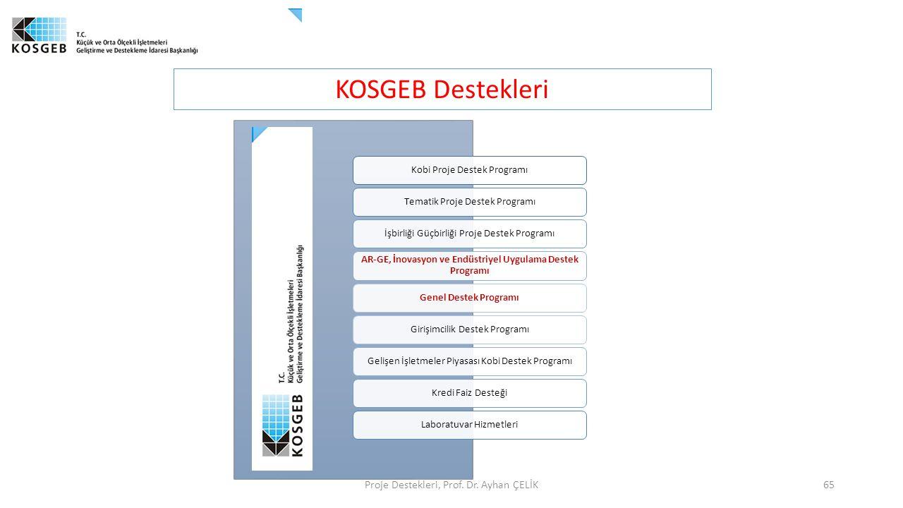 KOSGEB Destekleri Proje Destekleri, Prof. Dr. Ayhan ÇELİK65 Kobi Proje Destek ProgramıTematik Proje Destek Programıİşbirliği Güçbirliği Proje Destek P