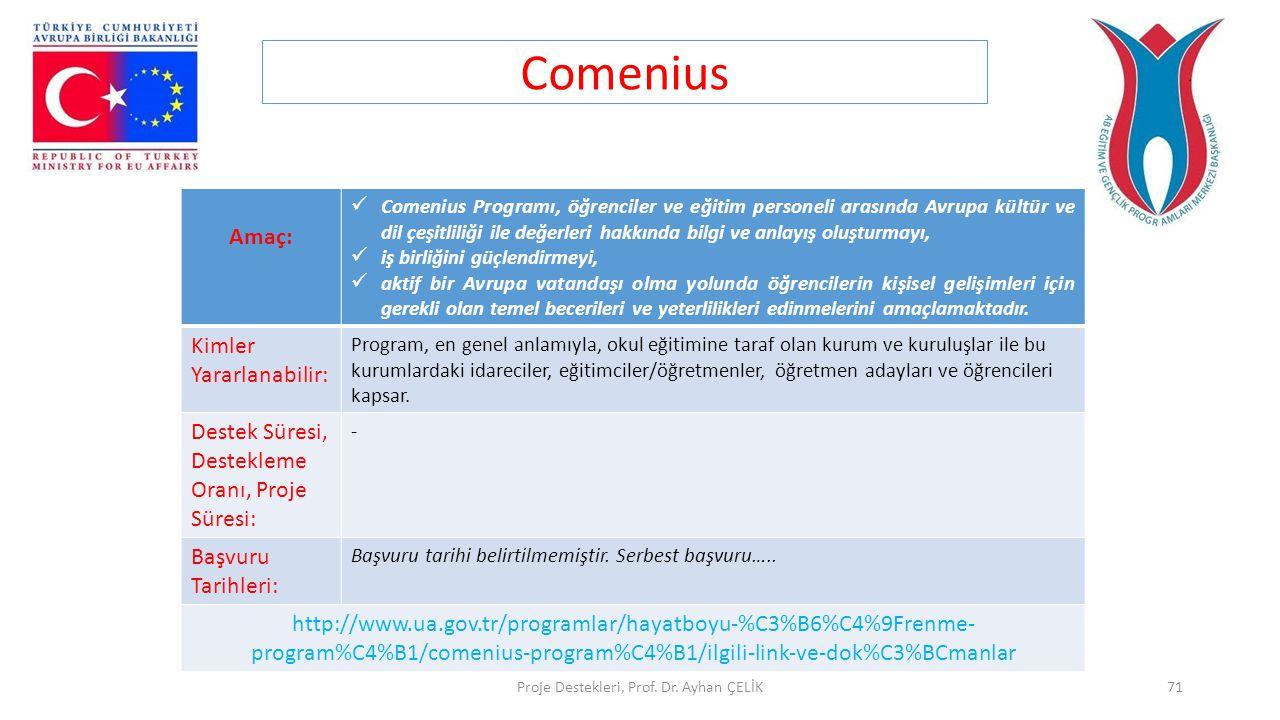 Proje Destekleri, Prof. Dr. Ayhan ÇELİK71 Comenius Amaç:  Comenius Programı, öğrenciler ve eğitim personeli arasında Avrupa kültür ve dil çeşitliliği