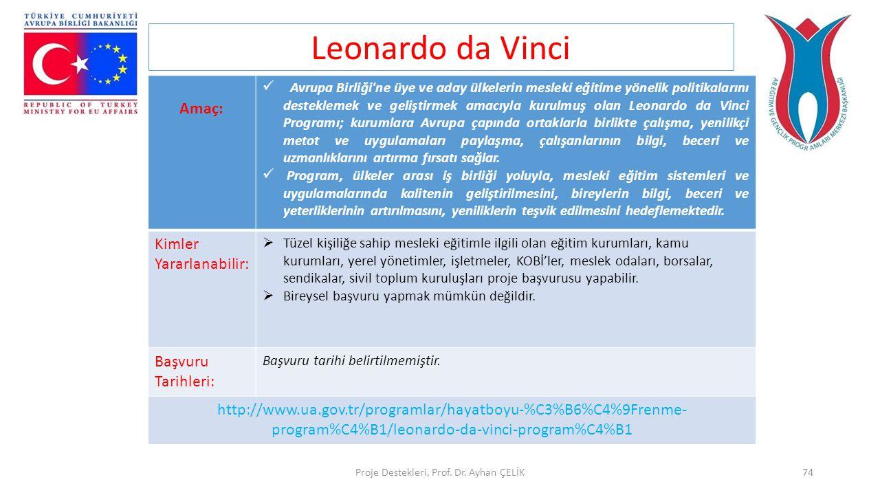 Proje Destekleri, Prof. Dr. Ayhan ÇELİK74 Leonardo da Vinci Amaç:  Avrupa Birliği'ne üye ve aday ülkelerin mesleki eğitime yönelik politikalarını des