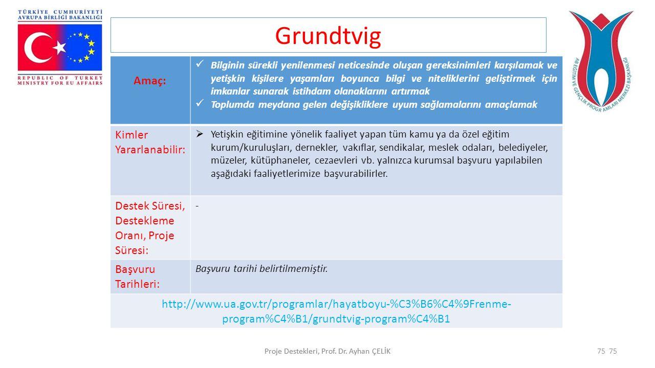 Proje Destekleri, Prof. Dr. Ayhan ÇELİK75Proje Destekleri, Prof. Dr. Ayhan ÇELİK75 Grundtvig Amaç:  Bilginin sürekli yenilenmesi neticesinde oluşan g