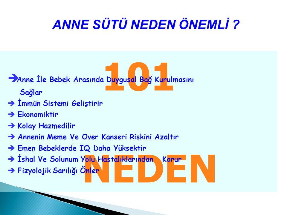101 NEDEN ANNE SÜTÜ NEDEN ÖNEMLİ .