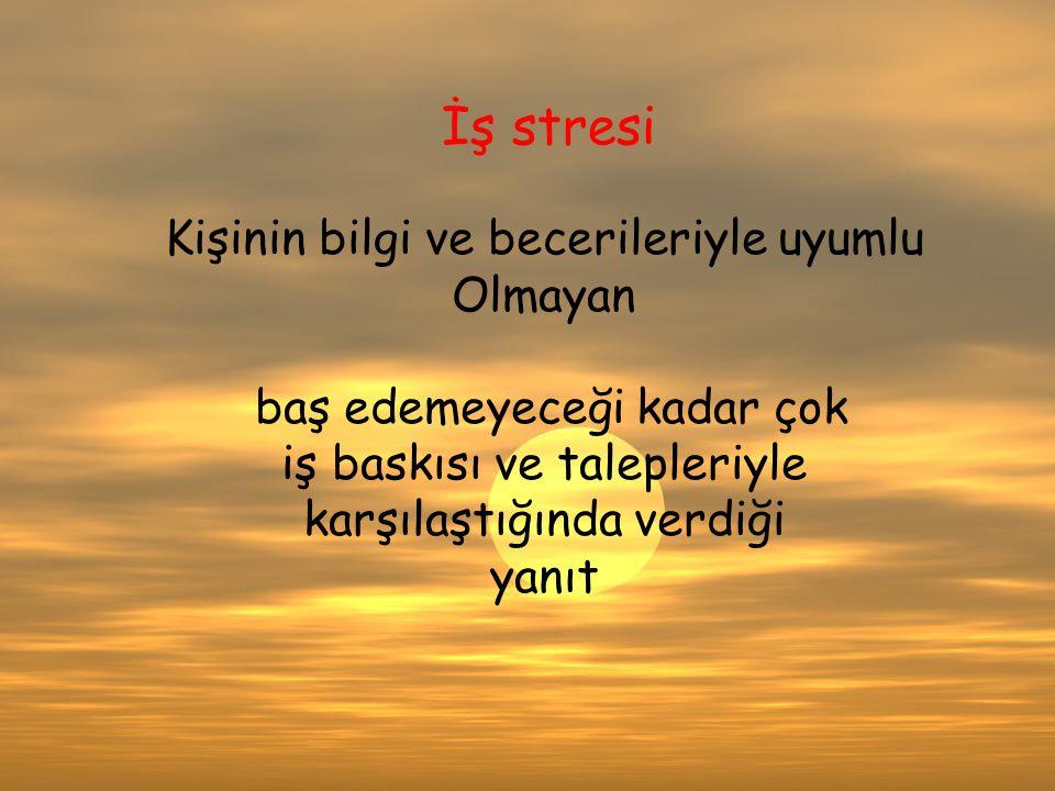 VV İş stresi Kişinin bilgi ve becerileriyle uyumlu Olmayan baş edemeyeceği kadar çok iş baskısı ve talepleriyle karşılaştığında verdiği yanıt