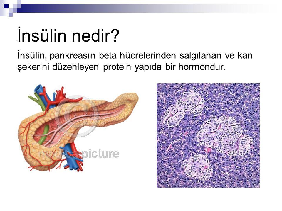 İnsan insülinleri  Regüler (Actrapid ®, Humulin ® R)  NPH (Insulatard ®, Humulin ® N)  Karışım insülinler (NPH-Regüler) (Mixtard ® 30 HM, Humulin ® M 70/30, Humulin ® M 80/20) NPH: Nötral Protamin Hagedorn