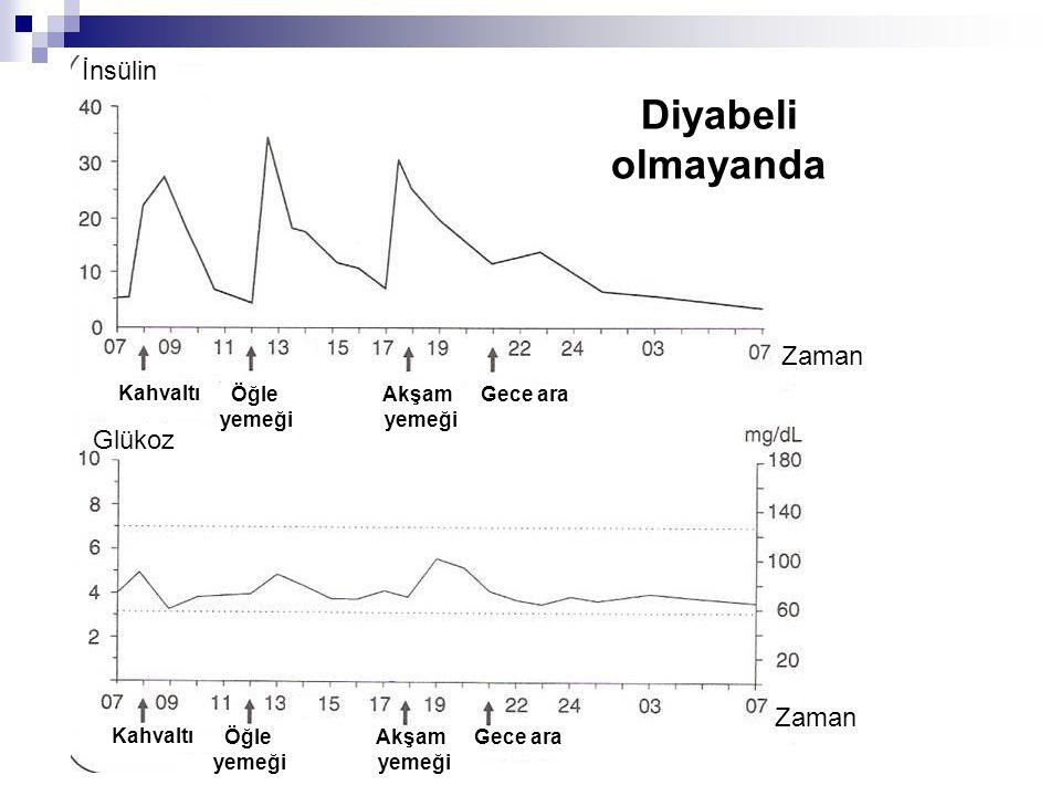 Kısa etkili (regüler) insülin  Etkisi  30 dk başlar  2-3.