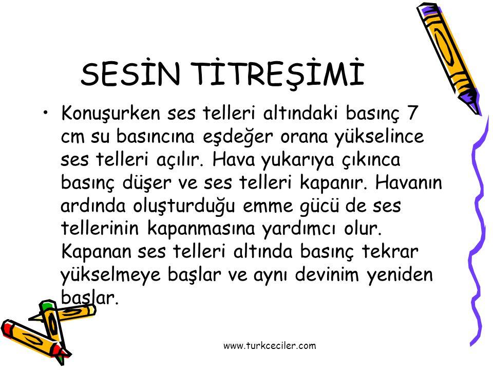 www.turkceciler.com SESİN TİTREŞİMİ •Konuşurken ses telleri altındaki basınç 7 cm su basıncına eşdeğer orana yükselince ses telleri açılır.