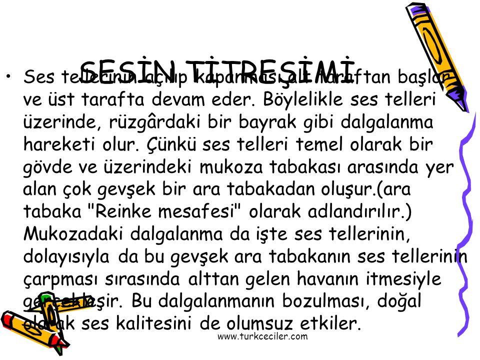 www.turkceciler.com SESİN TİTREŞİMİ •Ses tellerinin açılıp kapanması alt taraftan başlar ve üst tarafta devam eder. Böylelikle ses telleri üzerinde, r