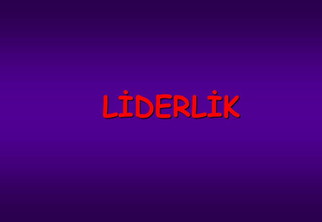 LİDERLİK Erkek Teknik Öğretim Genel Müdürlüğü İstanbul Denizcilik ve Su Ürünleri Meslek Lisesi Çağatay VARALAN