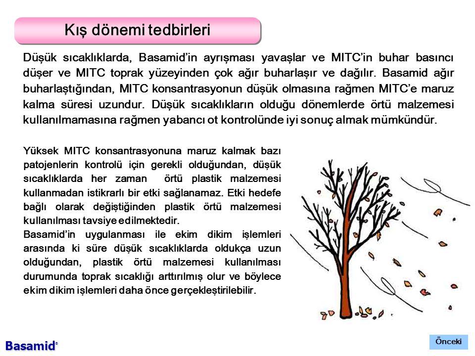 Kış dönemi tedbirleri Düşük sıcaklıklarda, Basamid'in ayrışması yavaşlar ve MITC'in buhar basıncı düşer ve MITC toprak yüzeyinden çok ağır buharlaşır ve dağılır.