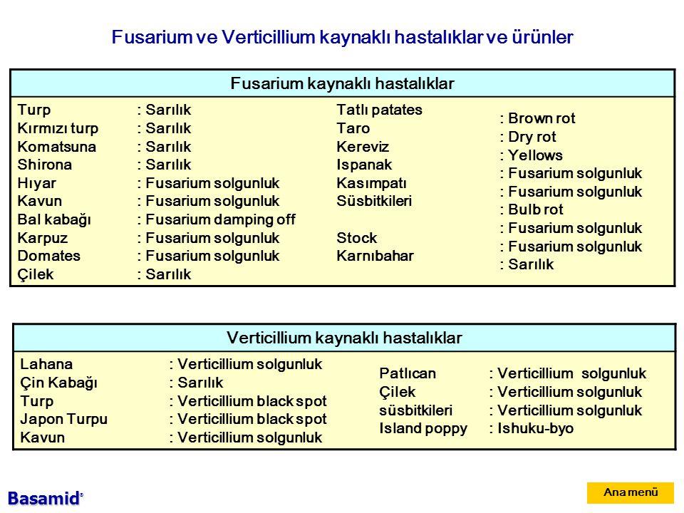 Ana menü Fusarium ve Verticillium kaynaklı hastalıklar ve ürünler Fusarium kaynaklı hastalıklar Turp Kırmızı turp Komatsuna Shirona Hıyar Kavun Bal kabağı Karpuz Domates Çilek : Sarılık : Fusarium solgunluk : Fusarium damping off : Fusarium solgunluk : Sarılık Tatlı patates Taro Kereviz Ispanak Kasımpatı Süsbitkileri Stock Karnıbahar : Brown rot : Dry rot : Yellows : Fusarium solgunluk : Bulb rot : Fusarium solgunluk : Sarılık Verticillium kaynaklı hastalıklar Lahana Çin Kabağı Turp Japon Turpu Kavun : Verticillium solgunluk : Sarılık : Verticillium black spot : Verticillium solgunluk Patlıcan Çilek süsbitkileri Island poppy : Verticillium solgunluk : Ishuku-byo