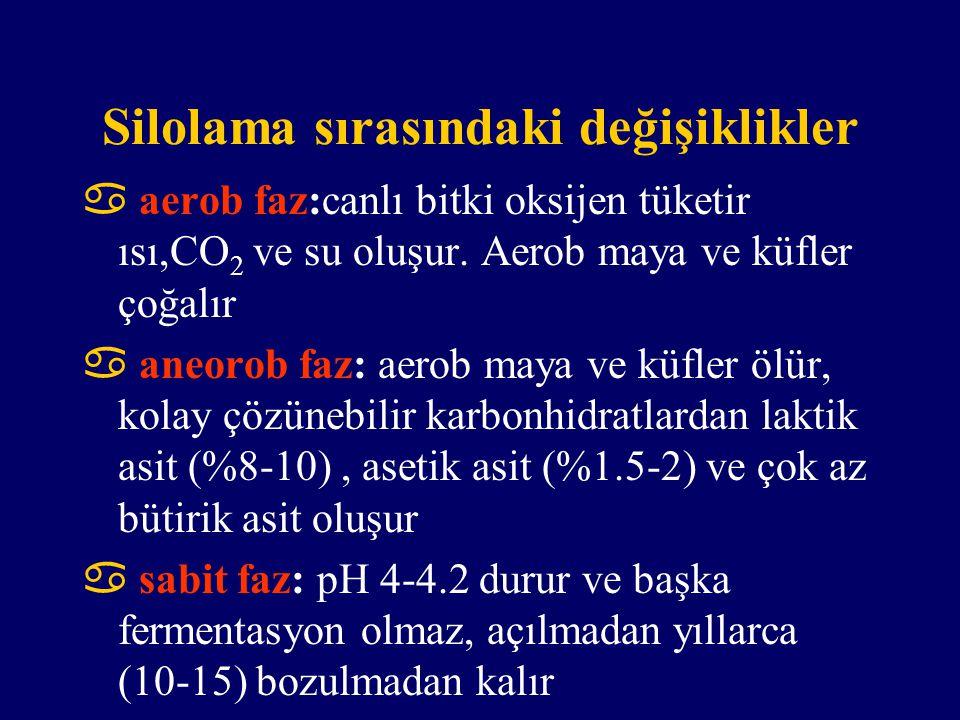 Silolama sırasındaki değişiklikler  aerob faz:canlı bitki oksijen tüketir ısı,CO 2 ve su oluşur. Aerob maya ve küfler çoğalır  aneorob faz: aerob ma