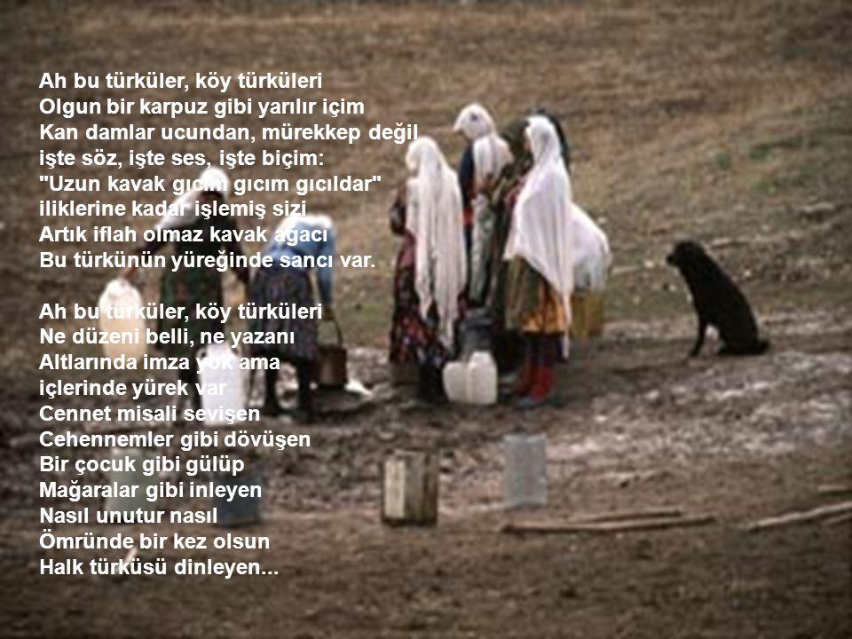 Ah bu türküler Türkülerimiz Ana sütü