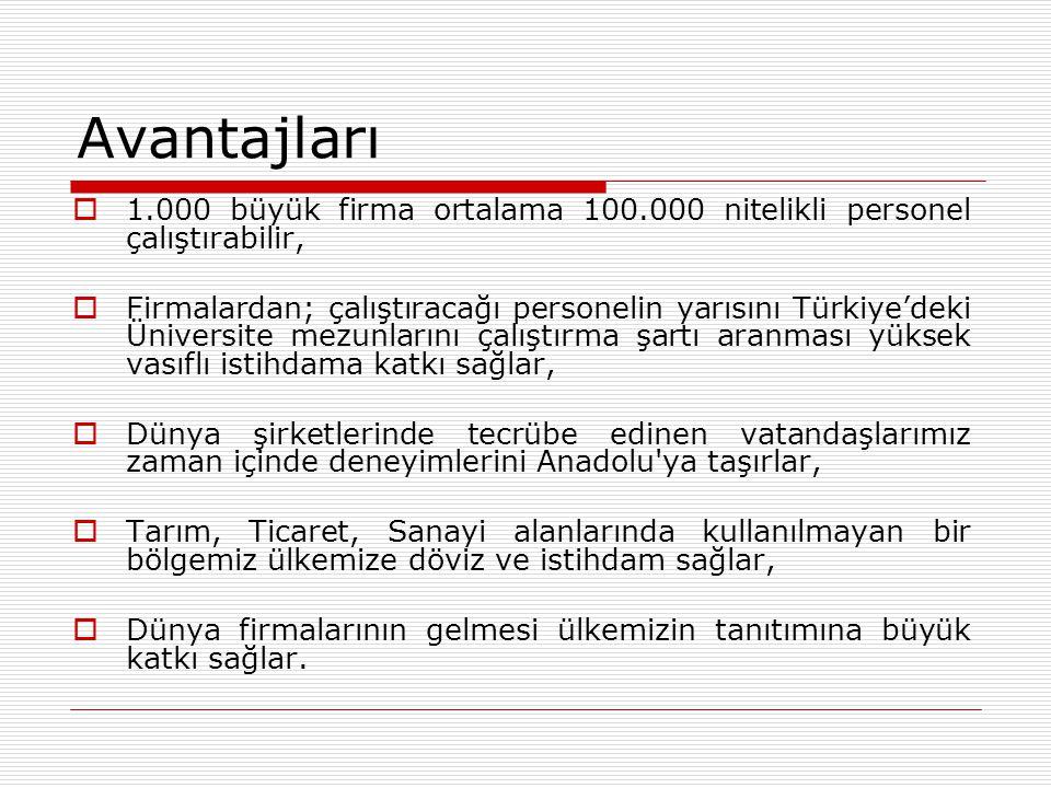 Avantajları  1.000 büyük firma ortalama 100.000 nitelikli personel çalıştırabilir,  Firmalardan; çalıştıracağı personelin yarısını Türkiye'deki Üniv