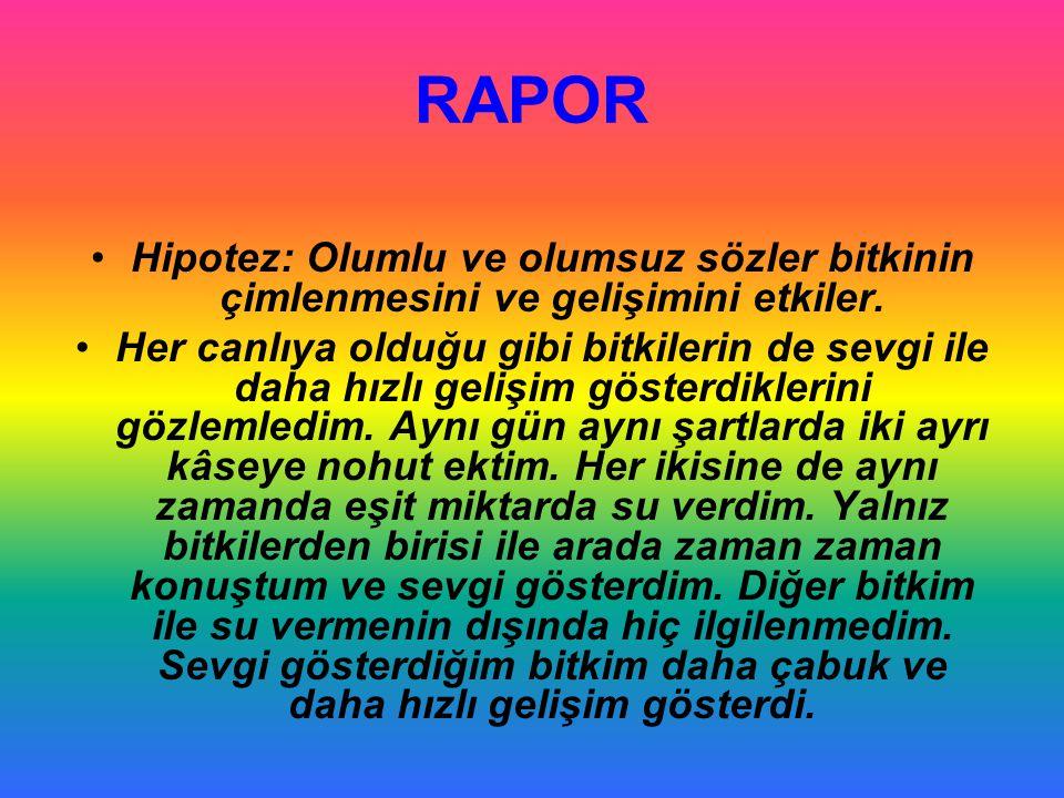 RAPOR •Hipotez: Olumlu ve olumsuz sözler bitkinin çimlenmesini ve gelişimini etkiler. •Her canlıya olduğu gibi bitkilerin de sevgi ile daha hızlı geli