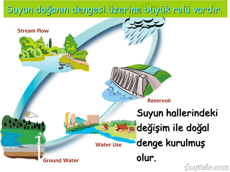 Suyun doğanın dengesi üzerine büyük rolü vardır.