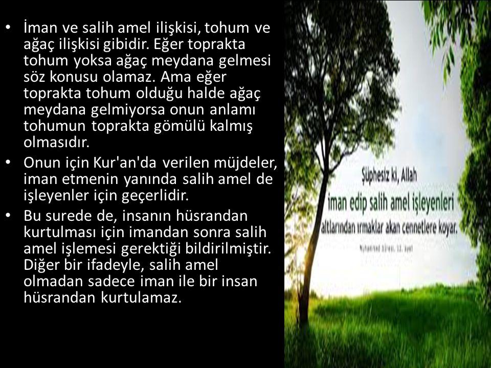 • İman ve salih amel ilişkisi, tohum ve ağaç ilişkisi gibidir.