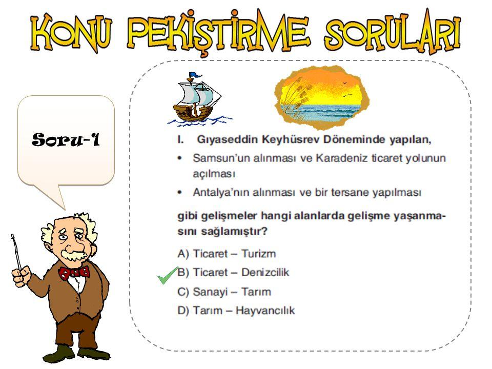 Türkiye Selçuklu Devleti