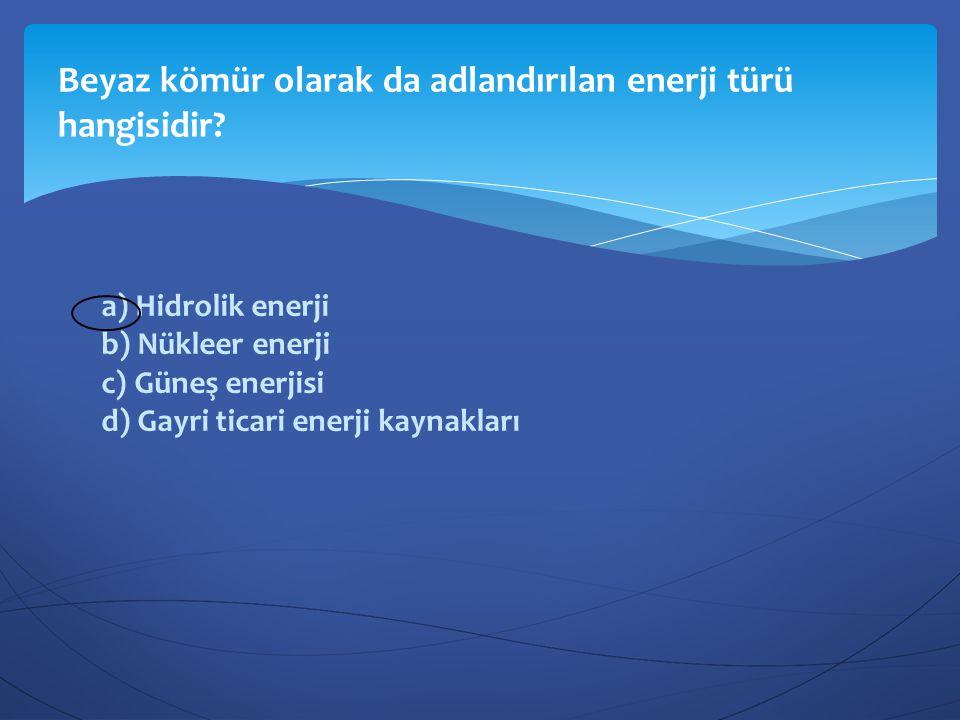 a) Hidrolik enerji b) Nükleer enerji c) Güneş enerjisi d) Gayri ticari enerji kaynakları Beyaz kömür olarak da adlandırılan enerji türü hangisidir?