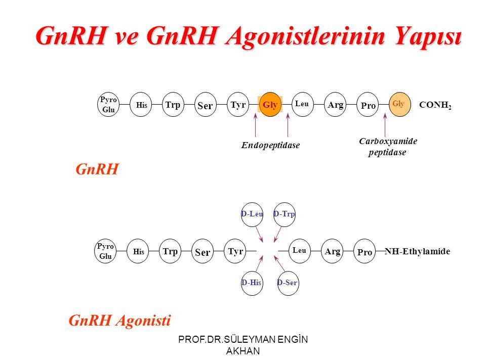 GnRH ve GnRH Agonistlerinin Yapısı GnRH Carboxyamide peptidase Pyro Glu His Trp Ser TyrGly Leu Arg Pro Gly CONH 2 Endopeptidase Pyro Glu His Trp Ser T