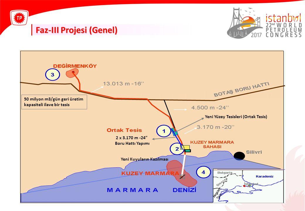 """Faz-III Projesi (Genel) Yeni Yüzey Tesisleri (Ortak Tesis) 2 x 3.170 m -24"""" Boru Hattı Yapımı Yeni Kuyuların Kazılması 50 milyon m3/gün geri üretim ka"""