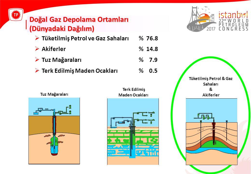  Tüketilmiş Petrol ve Gaz Sahaları% 76.8  Akiferler% 14.8  Tuz Mağaraları% 7.9  Terk Edilmiş Maden Ocakları% 0.5 Tuz Mağaraları Terk Edilmiş Maden Ocakları Tüketilmiş Petrol & Gaz Sahaları & Akiferler Doğal Gaz Depolama Ortamları (Dünyadaki Dağılım)
