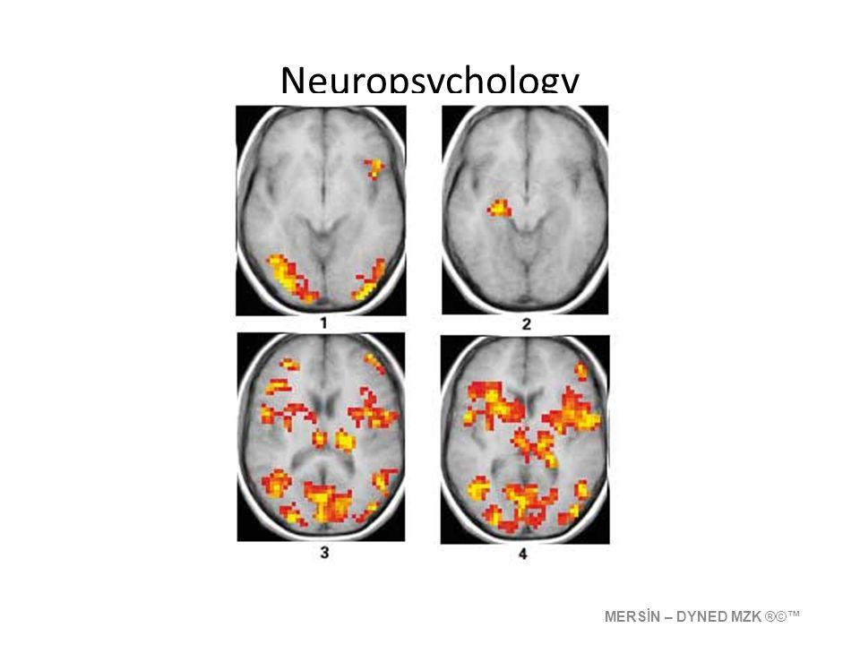 Neuropsychology MERSİN – DYNED MZK ®©™