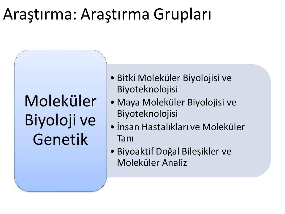 Araştırma: Araştırma Grupları •Bitki Moleküler Biyolojisi ve Biyoteknolojisi •Maya Moleküler Biyolojisi ve Biyoteknolojisi •İnsan Hastalıkları ve Mole