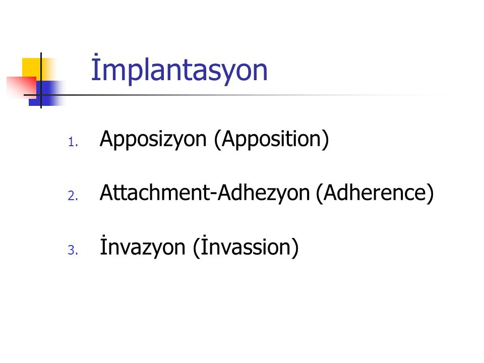 İmplantasyon 1. Apposizyon (Apposition) 2. Attachment-Adhezyon (Adherence) 3. İnvazyon (İnvassion)