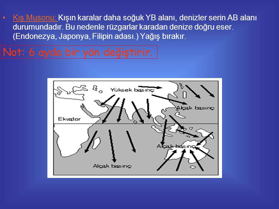 •Kış Musonu: Kışın karalar daha soğuk YB alanı, denizler serin AB alanı durumundadır. Bu nedenle rüzgarlar karadan denize doğru eser. (Endonezya, Japo