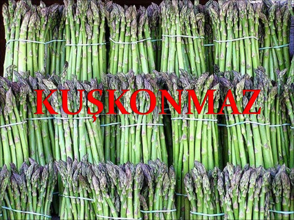 •Takım: Asparagales •Familya:Asparagaceae •Cins: Asparagus •Tür: Asparagus officinalis L.