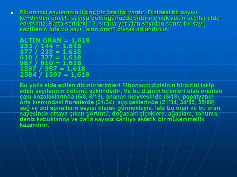  Fibonacci sayılarının ilginç bir özelliği vardır. Dizideki bir sayıyı kendinden önceki sayıya böldüğünüzde birbirine çok yakın sayılar elde edersini
