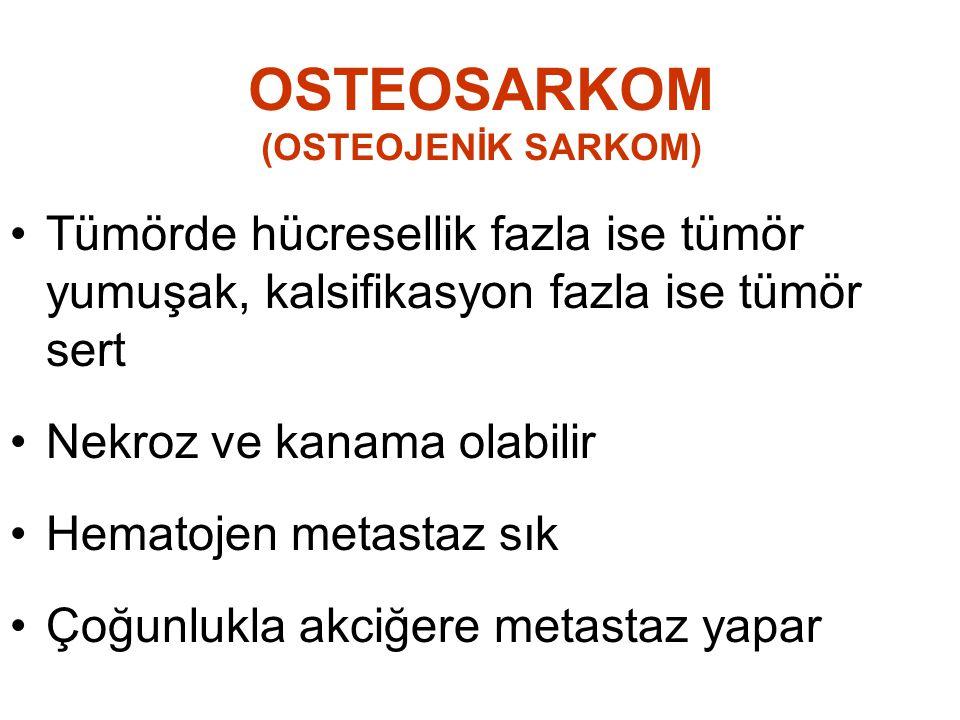 OSTEOSARKOM (OSTEOJENİK SARKOM) •Tümörde hücresellik fazla ise tümör yumuşak, kalsifikasyon fazla ise tümör sert •Nekroz ve kanama olabilir •Hematojen