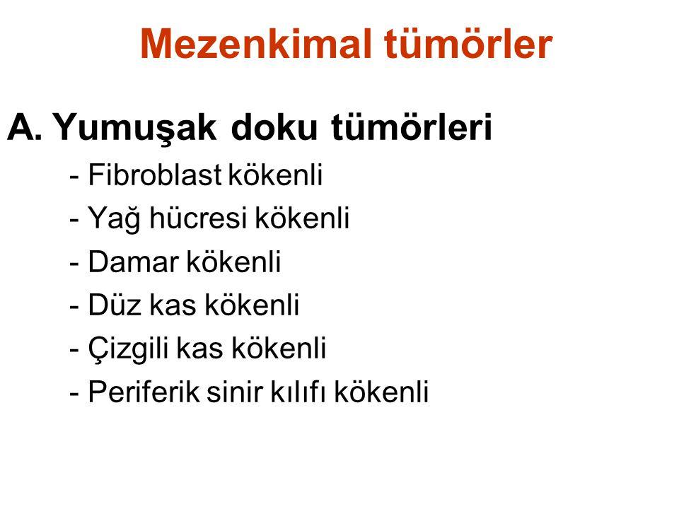 Mezenkimal tümörler A.Yumuşak doku tümörleri - Fibroblast kökenli - Yağ hücresi kökenli - Damar kökenli - Düz kas kökenli - Çizgili kas kökenli - Peri