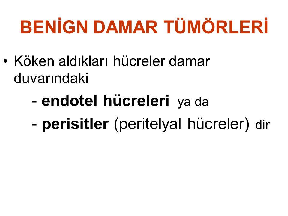 BENİGN DAMAR TÜMÖRLERİ •Köken aldıkları hücreler damar duvarındaki - endotel hücreleri ya da - perisitler (peritelyal hücreler) dir