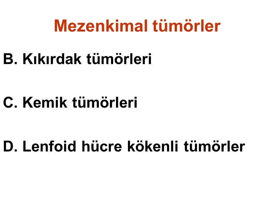 Mezenkimal tümörler B. Kıkırdak tümörleri C. Kemik tümörleri D. Lenfoid hücre kökenli tümörler