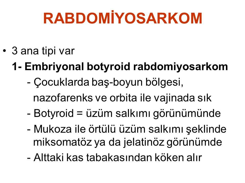 RABDOMİYOSARKOM •3 ana tipi var 1- Embriyonal botyroid rabdomiyosarkom - Çocuklarda baş-boyun bölgesi, nazofarenks ve orbita ile vajinada sık - Botyro