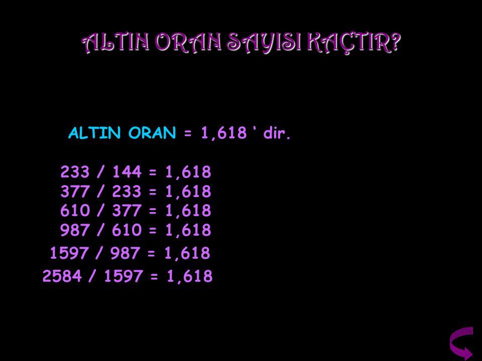 ALTIN ORAN SAYISI KAÇTIR? ALTIN ORAN = 1,618 ' dir. 233 / 144 = 1,618 377 / 233 = 1,618 610 / 377 = 1,618 987 / 610 = 1,618 1597 / 987 = 1,618 2584 /
