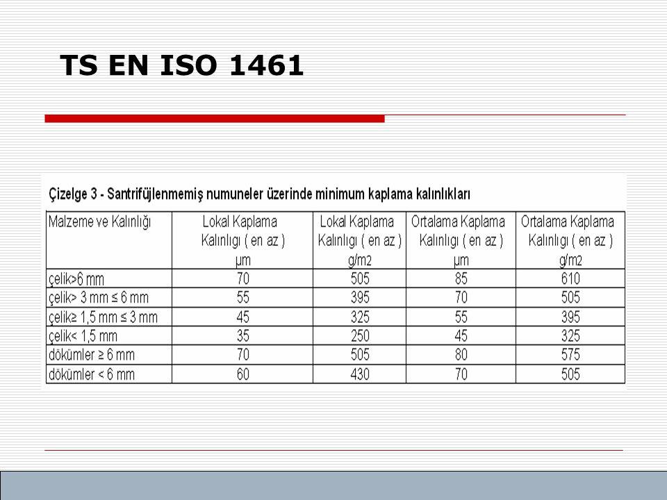 TS EN ISO 1461