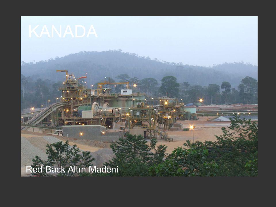 Freeport-McMoran Bakır-Altın Madeni PAPUA YENİ GİNE